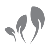 Three plant shoots icon to represent starting and growing a business