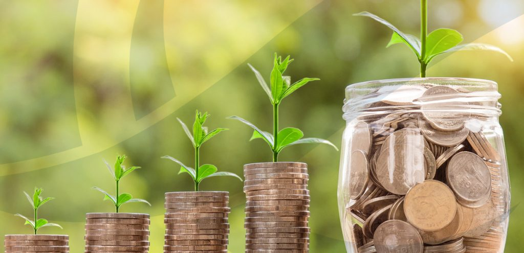 Four columns of coins with plant shoots on top next to jar of coins with plant shoot to represent farm accountancy